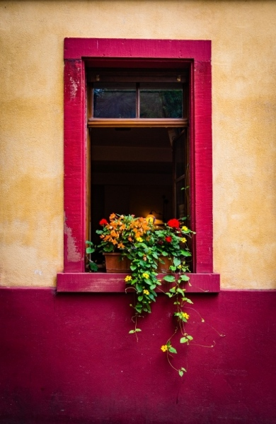 Fine-art-window-Flowerbox